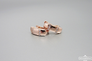 Smulkūs auksiniai auskarai - AUA110